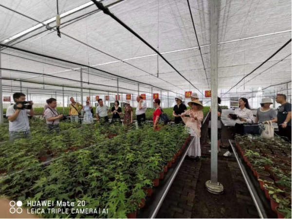 保加利亚农业和农业科技官员一行到金溪育苗基地参观考察
