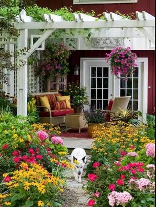 守一间小院,享一夏清凉